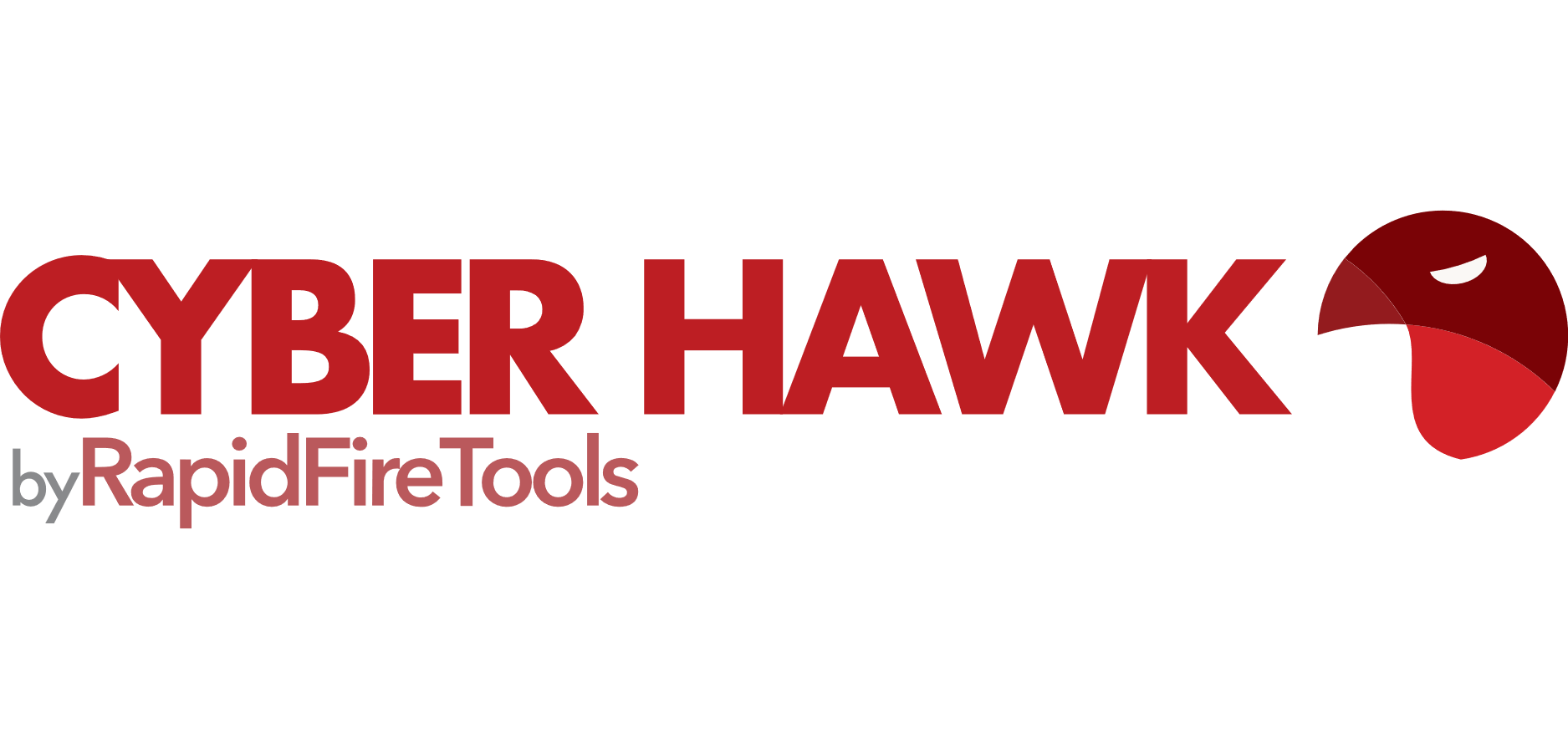 Cyber Hawk Logo Text Byline